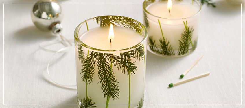 Shop Thymes Frasier Fir Collection | Perfect Enticing Holiday Candles