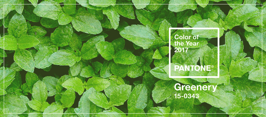 Shop Furniture Home Accessories In Pantone 39 S 2017 Color