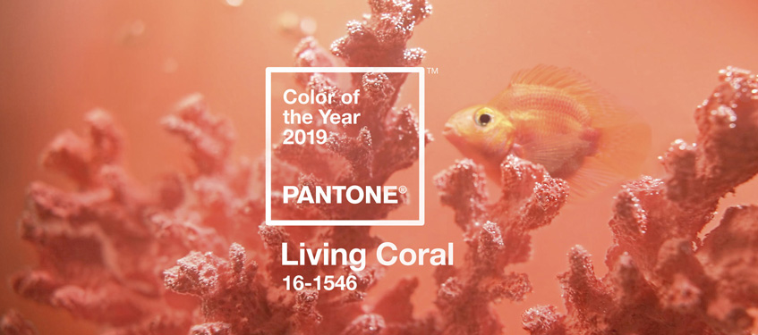 Pantone Color of the Year 2019 | Shop Living Coral Home Decor