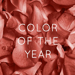 2019 Pantone Color of the Year | Shop Living Coral Furniture & Home Decor