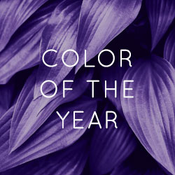 2018 Pantone Color of the Year | Shop Ultra Violet Furniture & Home Decor