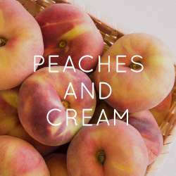 Peaches & Cream - 2017 Home Decor Trend