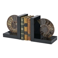 Chelsea House Home Fossil Bookend 383273