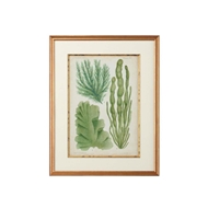 Chelsea House Wall Decor Seaweed Specimen In Green I 386449