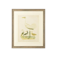 Chelsea House Wall Decor Antique Crane And Heron