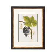 Chelsea House Wall Decor Grapes No. 1016 386584