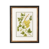 Chelsea House Wall Decor Grapes No. 1017 386585