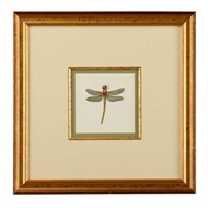 Chelsea House Wall Decor Miniature Dragon Fly II