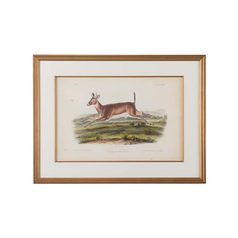 Chelsea House Wall Decor Long - Tailed Deer 386672 | Price Match ...