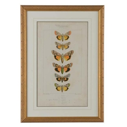Chelsea House Wall Decor Pauquet Butterflies I 386724