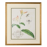 Chelsea House Wall Decor Canna And Dragonflies I 386802
