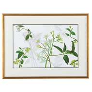 Chelsea House Wall Decor Solanum I 386835