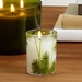 Thymes Frasier Fir Pine Needle Votive Candle