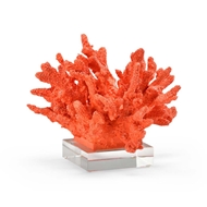 Wildwood Home Coral
