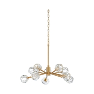 Wildwood Lighting Molby Chandelier 67253 Iron/Crystal