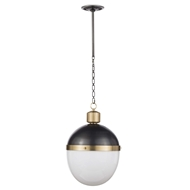 Regina Andrew Lighting Otis Pendant Large - Blackened Brass/Natural Brass