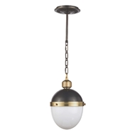 Regina Andrew Lighting Otis Pendant Small - Blackened and Natural Brass