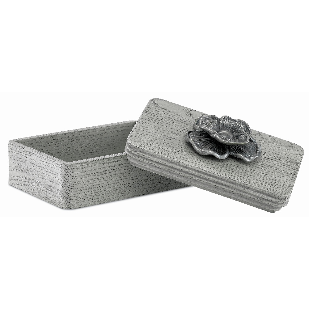 Currey & Company Home Briallen Winter Gray Box 1200-0016 - Winter Gray/Antique Silver