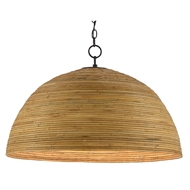 Currey & Company Lighting Plantsman Pendant 9000-0478 - Satin Black/Natural