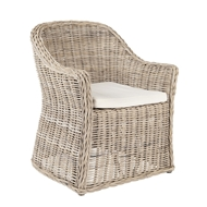 Phillips Scott Home Palmer Chair Palm-C