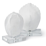 Regina Andrew Home Turtle Shells On Crystal - Set of 2 Small