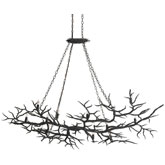 Currey & Company Lighting Rainforest Chandelier